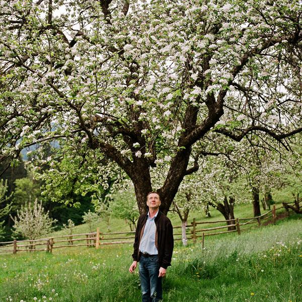 Valentin Latschen – Apfelblüte